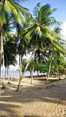 Galibi beach